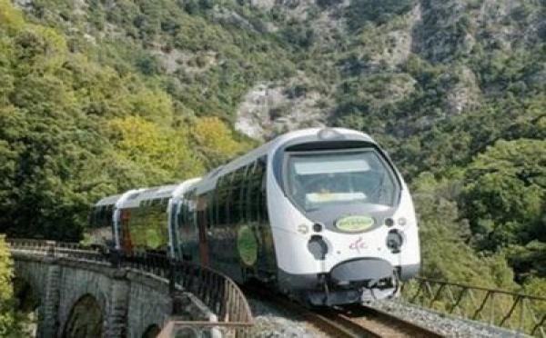 Le train : gouffre ou opportunité ?